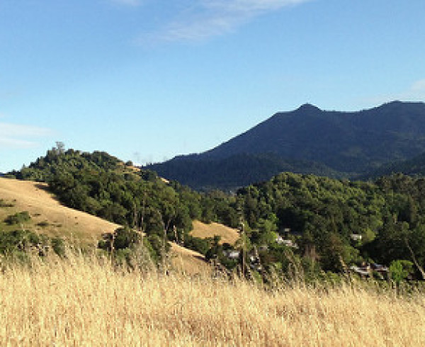 San Rafael's Sun Valley Shines for Top Schools, Natural Surroundings